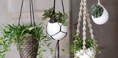 Ikea Hacks, Plant Hanger, Diys, Plants, Space, Home Decor, Fern, Beautiful Gardens, Wall Trellis
