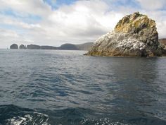 #Tasman Peninsula. #Tasmania