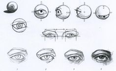 Amazing Learn To Draw Eyes Ideas. Astounding Learn To Draw Eyes Ideas. Drawing Tutorials, Drawing Techniques, Drawing Tips, Drawing Reference, Eye Anatomy, Anatomy Art, Anatomy Drawing, Anatomy Sketches, Body Sketches