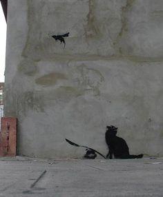 Bansky, cat