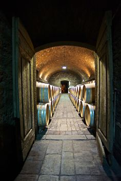 The old Badia a passignano Abbaye is home to Antinori's sacred wine, Tignanello, as we walk through these doors, the only thing I coud think of is…I must be in paradise!