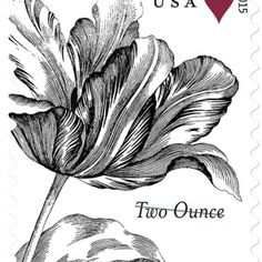 USPS Offices ✪ Buy Nature Postage Stamps