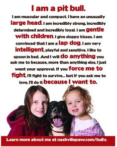 i am a pit bull. <3  and i will ALWAYS be a pit bull advocate and speak the truth against the ignorant falsities that surround this incredible breed.