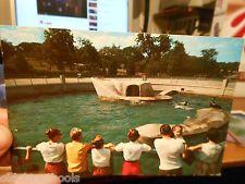 swope park zoo pictures | ... Antique Postcard MISSOURI Kansas City Zoo Swope Park Sea Lion Seals Kansas City Zoo, Zoo Pictures, Seals, Summer Days, Missouri, Nostalgia, Lion, Antique, Park