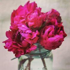 Esta semana atrévete a elaborar este sencillo arreglo, ideas sencillas y con buen gusto. #Alegra #Flores