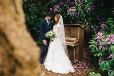 Iscoyd Park Wedding Photography Photography Ideas, Wedding Photography, Park Weddings, Wedding Venues, Wedding Dresses, Fashion, Wedding Reception Venues, Bride Dresses, Moda