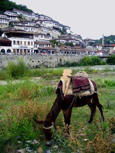 Berat, Albania. http://evysinspirations.tumblr.com/post/16064454361/via-grazing-by-the-old-town-a-photo-from-berat