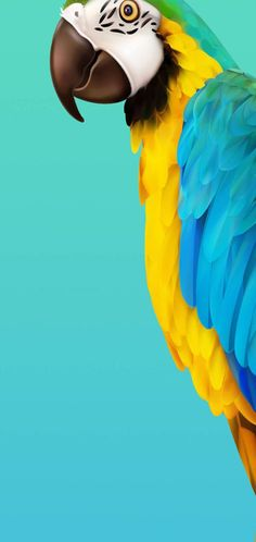 samsung wallpaper galaxy Best Galaxy Note Note 10 Plus wallpapers for Infinity O display in 2019 - Smartprix Parrot Wallpaper, 4k Wallpaper Iphone, 4k Wallpaper For Mobile, Samsung Galaxy Wallpaper, Dark Wallpaper, Sunrise Wallpaper, Apple Wallpaper, Tumblr Wallpaper, Screen Wallpaper