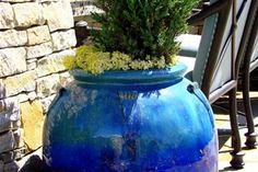 Blue Outdoor Pottery . . . Is there anything more beautiful? http://www.landscapingnetwork.com/orange-county/backyard-resort-irvine.html