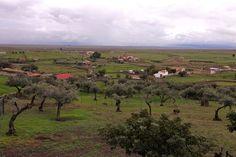 Brozas Vineyard, World, Outdoor, Image, Scouts, Tourism, Outdoors, Vine Yard, Vineyard Vines