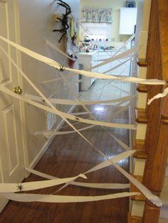 Hallway toilet paper spiderweb