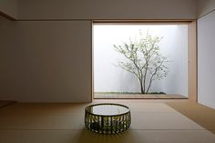 baqueratta architectural design / s-o house, tokyo Japan Interior, Patio Interior, Modern Interior, Interior Design, Japanese Home Decor, Japanese House, Atrium, Japanese Architecture, Architecture Design