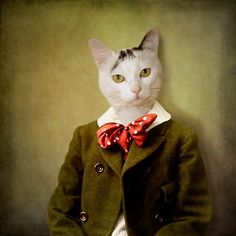 "The attentive boy"" by Martine Roch, anthropomorphic cat collage"