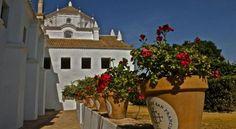 Monasterio de San Francisco - 3 Star #Hotel - $74 - #Hotels #Spain #PalmadelRío http://www.justigo.me.uk/hotels/spain/palma-del-rio/hospederiasanfrancisco_9462.html