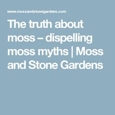 The truth about moss – dispelling moss myths | Moss and Stone Gardens