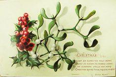Christmas Holly by Shirley Wynn, 1880