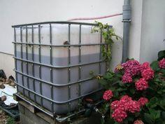 Citerne récupération eau de pluie - Citerne externe - Vous avez installé un récupérateur d'eau de pluie ?