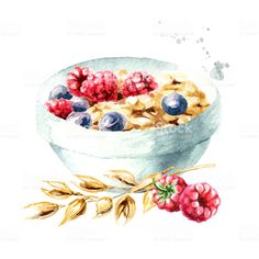Oat flakes muesli with raspberries and blueberries. Watercolor hand drawn illustration isolated on white background - Royalty-free Oats - Food stock illustration Strate Design, Kuretake Gansai Tambi, Watercolor Food, Oats Recipes, Food Drawing, Food Illustrations, Pictures To Paint, Cute Food, Free Vector Art