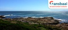 Accommodation in Gansbaai The Great White, Great White Shark, African Penguin, Bottlenose Dolphin, Rocky Shore, Big 5, Nature Reserve, Africa Travel, South Africa