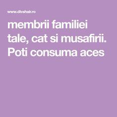membrii familiei tale, cat si musafirii. Poti consuma aces Cats, Gatos, Cat, Kitty, Kitty Cats
