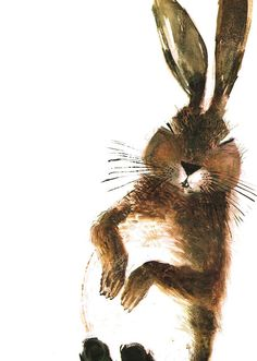 30 millions d'amis magazine aime. Brian Wildsmith, Hare and tortoise, 1966 lapin rabbit dessin illustration Art And Illustration, Rabbit Illustration, Hare & Tortoise, Art Beauté, Rabbit Art, Rabbit Life, Bunny Art, Guache, Mundo Animal