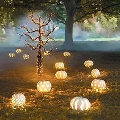 I love the idea of the lit up white pumpkins lighting the path! It reminds me of Cinderella's carriage. These have potential to be really elegant (assuming someone with artistic ability carves them!)