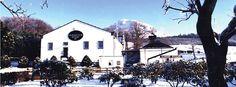 A Glengoyne Snowy Winter Wonderland