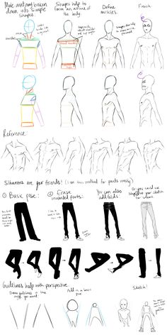 Male Anatomy Reference and Perspective Tips by DeviantTear.deviantart.com