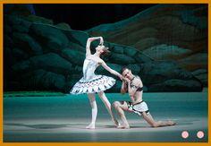 A HISTÓRIA DO BALLET DE REPERTÓRIO Historia Do Ballet, Silhouette Art, Ballet Skirt, Fashion, Moda, La Mode, Fasion, Fashion Models, Trendy Fashion