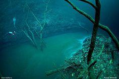 Cenote Scuba Diving Mexico. Cenote Angelita