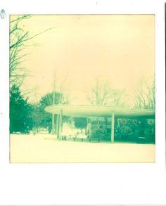Polaroid SX 70 land camera. Imposible. Hasenheide, Berlin Neukölln, -3 Grad