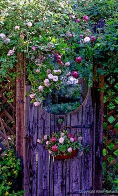Into the Garden IDEA: from the patio to the door of the secret garden. The patio looks normal for enjoyment but the real surprise is behind the secret garden door ; The Secret Garden, Secret Gardens, Dream Garden, Garden Art, Garden Doors, Garden Entrance, Garden Cottage, Rose Cottage, Enchanted Garden