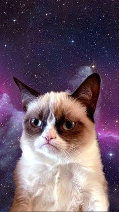Grumpy Cat in Space wallpaper