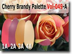 Cherry Brandy Color Palette by Polymer Clay Tutor