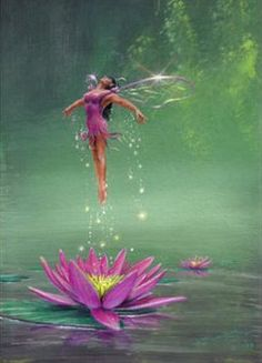 birth of a water lilly fairy