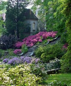 Winterthur Mus. Garden & Library