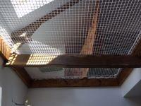 filet mezzanine