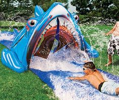 Shark's Mouth Water Slide – Gadgets Shark Mouth, Shark S, Shark Week, Huge Shark, Outdoor Parties, Outdoor Fun, Bouncy Castle Hire, Slip N Slide, Gadgets