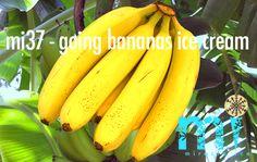 bananen I soma melk I vanilla Banana Ice Cream, Fruits And Vegetables, Vanilla, The Creator, Cocktails, Food, Craft Cocktails, Fruits And Veggies, Essen