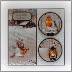 This is another card that I created using the new Pollyanna Pickering CD and Paper Collection - Garden Visitors. The collection uses revisit. Create And Craft Tv, Printable Designs, Handmade Birthday Cards, Homemade Cards, Cardmaking, Christmas Cards, Paper Crafts, Crafty, Robins