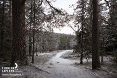Road in Ylläs fell in Finnish Lapland. Photo by Jani Kärppä/ Lappikuva. #filmlapland #arcticshooting #finlandlapland
