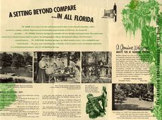 Rainbow Springs State Park originated as a tourist attraction in the 1930s. Due to the development of Disney World and other Orlando area attractions, Rainbow Springs attracted fewer customers and closed in 1973. Local citizens fought efforts to redevelop the area until the State of Florida bought the park in 1990. With the assistance of local volunteers, the park reopened in 1992. This pamphlet is from the Rainbow Springs Tourist Attraction Sale Presentation Package, 1954. Vintage Florida, Old Florida, State Of Florida, Rainbow Springs State Park, Seven Heavens, Summer Fun, State Parks, 1930s, Underwater