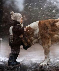 Winter guardian…