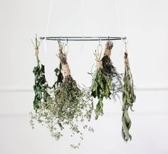 Dry summer herbs in style with a do-it-yourself drying rack for under $20