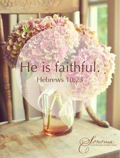 Hebrews 10:28
