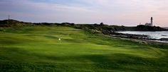 Turnburry - ailsa course - one day
