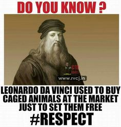 Faith in humanity restored Good To Know, Did You Know, Vegan Quotes, Vegan Memes, Stop Animal Cruelty, Dog Cruelty, Faith In Humanity Restored, Thing 1, Animal Welfare