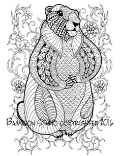 Hand Drawn Artistic Marmot Groundhog In Flowers For Adult Coloring Page Size Doodle Zentangle StyleFrom The Gallery Animals