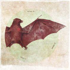Bat (Made on my iPhone) Moose Art, Birds, Illustration, Animals, Inspiration, Iphone, Patterns, Necklaces, Girls