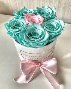"""62 mentions J'aime, 1 commentaires - The Prestige Roses Switzerland (@theprestigerosesswitzerland) sur Instagram : """"Schönen Abend euch Diese Tiffany Farbe mit hellrosa passen sehr schön zusammen✨ Summer is in the…"""""""